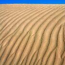 Sand Dunes -I by RajeevKashyap