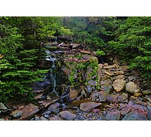The Flow of Life Photographic Print