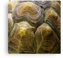 Valleys and hills. II Canvas Print