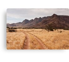 Wolwedans Road Canvas Print