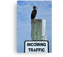 Air Traffic Control...For The Birds Canvas Print