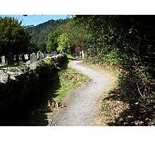 Pathway in Glendalough, Ireland Photographic Print
