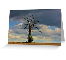 Tree #10 Greeting Card