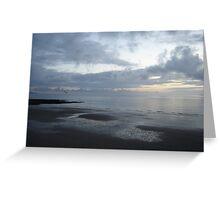 Flight of a seagull at sunset, Ballybunion, Ireland Greeting Card