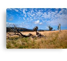 Highlands Country Canvas Print