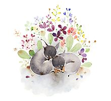 Puppies and flower Photographic Print