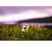 Perfect in time Photographic Print