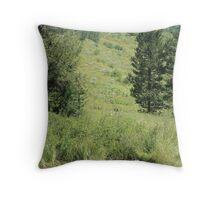 Creekside beauty Throw Pillow