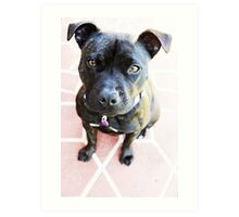 Milly Is My Name  Art Print
