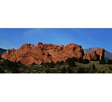Kissing Camels - Can you spot them? Photographic Print