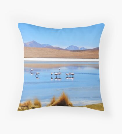 Flamingos - Salar Laguna amongst Volcanos, Uyuni Throw Pillow