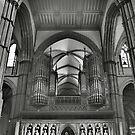 Rochester Cathedral's organ pipes  by larry flewers