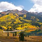 Autumn Colours at Trout Lake by Alex Cassels