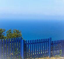 The Blue Fence by olga zamora