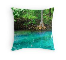 Clearwater at Silver Springs Throw Pillow