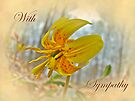 Sympathy Card - Trout Lily by MotherNature