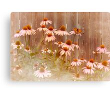 ConeFlower Camouflage   Canvas Print