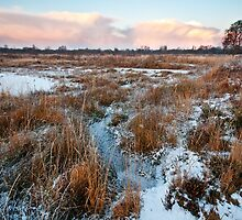 Frosty evening at Brackagh Moss by NIEye