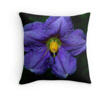 Solanum aviculare  Throw Pillow