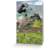 Lord Howe Cliffs Greeting Card