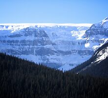 Icefields Highway by Tess Vincent