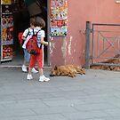 Let Sleeping Dogs Lie by joycee