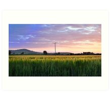 Irish Fields Art Print