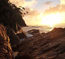 Slippery with Sunshine by KelShel