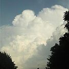  Cumulonimbus 59 by dge357