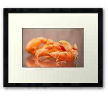 Fresh deformed carrot roots Framed Print