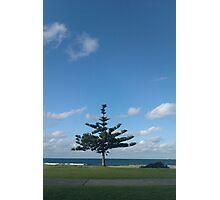 Bulli Beach Scene Photographic Print