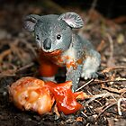 drop bear by Richard Morden
