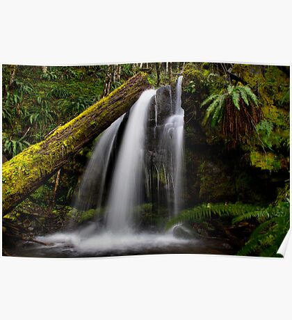 A Place To Rest ~ Upper Quartzville Creek ~ Poster