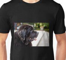 large black Newfoundland dog Unisex T-Shirt