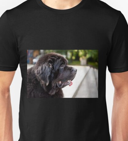 large black Newfoundland dog Unisex T-Shirt
