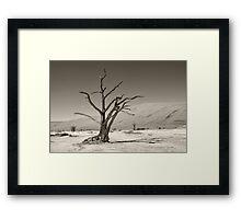 Dry As a Bone Framed Print