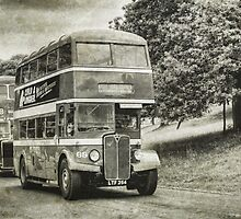 Double Deckers by David J Knight