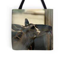 Mule Deer...My this fence tastes good... Tote Bag
