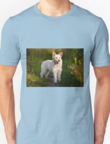 white stray dog in meadow T-Shirt