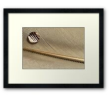 Dewdrop on Quill Feather Framed Print