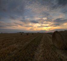 Rural Sunset by Stefan Trenker