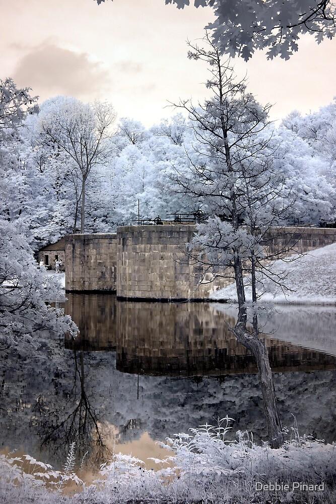 The Lock - Jones Falls Ontario by Debbie Pinard