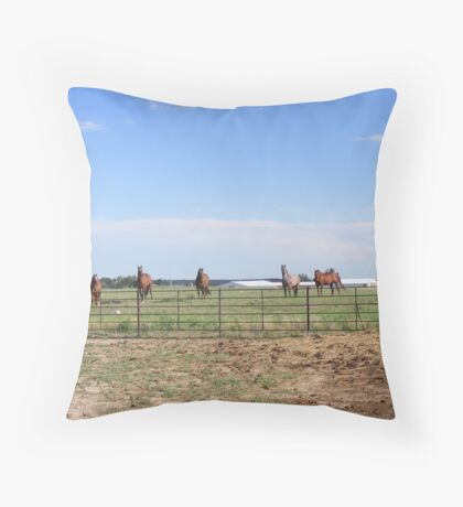 Equine & Llama Curiosity Throw Pillow