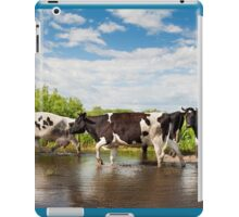 Cows walking across puddle iPad Case/Skin