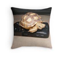 Sulcata Tortoise Throw Pillow