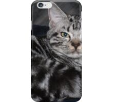 Awesome American Shorthair iPhone Case/Skin