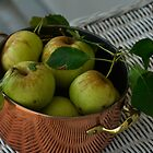 Green Apples in Copper Pot #2 by marymdmed