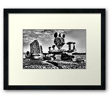Halcyon Days Framed Print