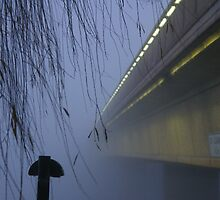Yup, The Weather Bureau Was Right About The Fog by David McMahon