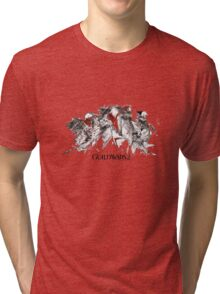 Guild Wars 2 Tri-blend T-Shirt